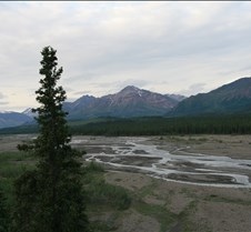 Alaska 2008 - Denali NP 7-7-08