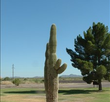 Gila Bend Reservation 1