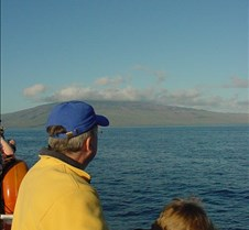 Looking for Whales - Lanai in front