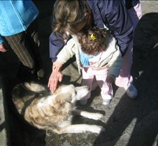 febrero2006 006