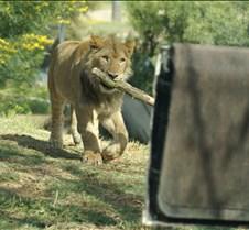 Wild Animal Park 03-09 203