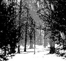 snowfall2-posterize