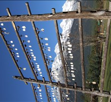 2008 Nov Lijiang 016