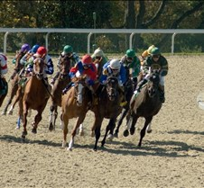 Kentucky Thoroughbred Racing Kentucky is home of great thoroughbred race horses and of a long tradition of world-class racing.