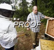 102612_beekeeper