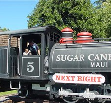 Driving the Sugar Cane Train
