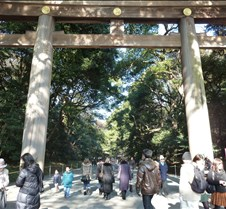 Closeup of Meiji Shrine Torii