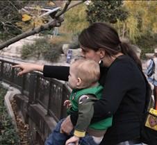 J Zoo 0611_042