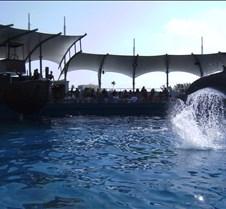 Miami Seaquarium 088