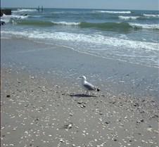 Beach Atlantic city10