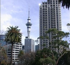 Auckland Skyline from Park