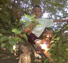 Jacob_Cody-Lexy in Tree