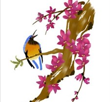 Flowering Peach & Bananaquit