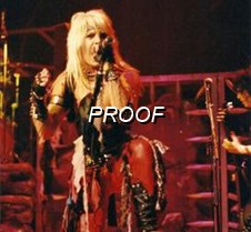 Vince Neil Shout Tour