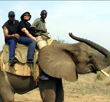 Elephant Ride0018