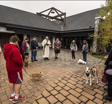 Blessing of the Animals 2014