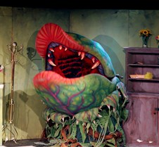 "Little Shop of Horrors Yale University actors perform ""Little Shop of Horrors"""