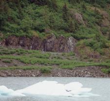 Alaska 2006-1