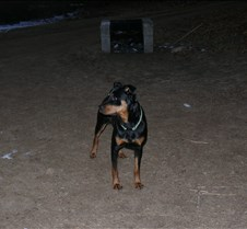 2008-01-25