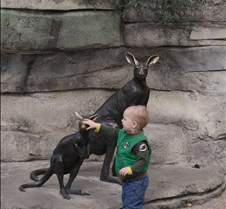 J Zoo 0611_044