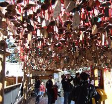2008 Nov Lijiang 072