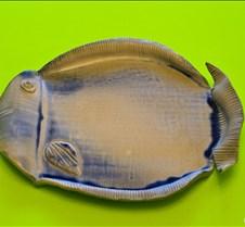 Fish Bowl Fish Bowl