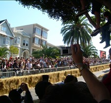 Crowds on the Street & in Trees