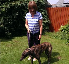 2013_08_01 - Beya Cindy now called Beya has found her new forever home with Helen & Neil in Dulais near Merthyr