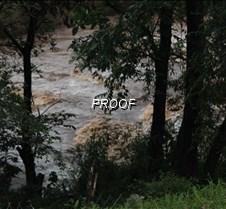 November 27, 2014 Nature Nature Photos