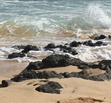 Sandy Beach 10 4-25-05