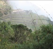 Peru 250