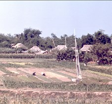 Vegetable Fields