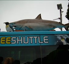 Kelly Tarlton's Free Shuttle