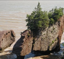 July 29, 2006 Hopewell Rocks, NB We spent the entire day at Hopewell Rocks.  We got there at low tide, walked on the ocean floor, then watched the tide come in -- 38 feet!!  Then the tide went out and we went back to the ocean floor! What a wonder of nature!!