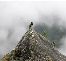 Peru 340