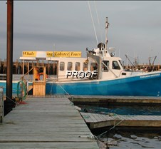 Our whale watch boat Digby, NS