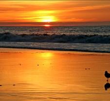 Torrance Beach at Sunset