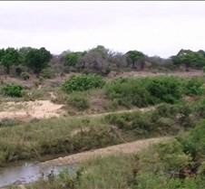 Ivory Lodge Safari Mupulanga0003