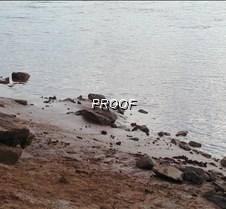 P7310058