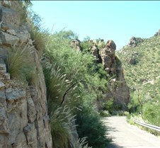 Tucson Sabino Canyon 37