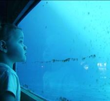 Miami Seaquarium 042