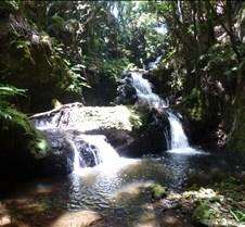 Hawaii 2010 036
