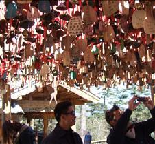 2008 Nov Lijiang 071