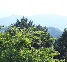 Summit of Mt. Takao