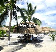 playa y vacaciones palmeras