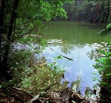 Land_&_Water