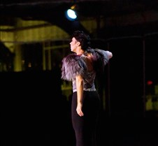 2011 Gala Performance by D. Ingogly Copyright David Ingogly