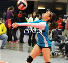 HS-volleyball2 2-14