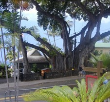 Kona, Hawaii