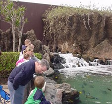 Checking OUt the Maui Ocean Center with